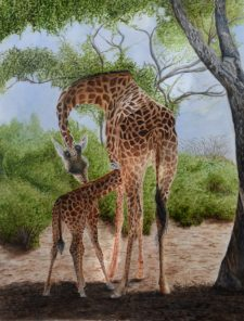 Watercolor-Giraffes-Robbie-Fitzpatrick-Family-e1505256321731